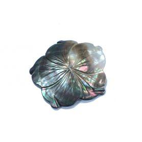 Kagyló medál Ø6cm