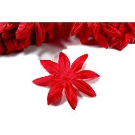 Nyomott virág 5cm