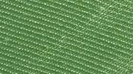 Biyelli 26 élénk zöld