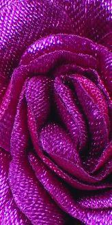 Virág 010